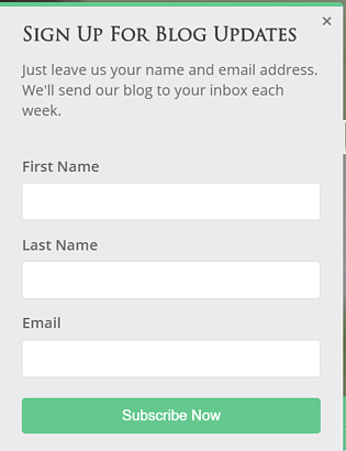 An example of form that collects visitors' information without asking too many details